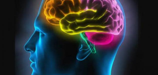 كيف تقوي ذاكرتك وتحسن الحفظ لديك