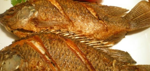 طريقة عمل السمك البلطي المقلي موقع مصادر