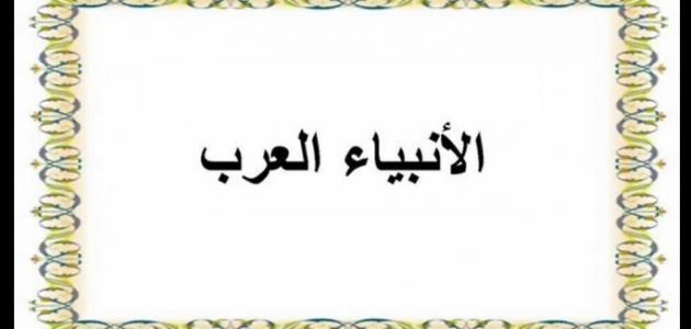 عدد الأنبياء العرب