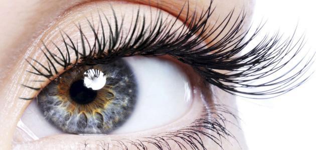 كيفية الحصول على عيون لامعة