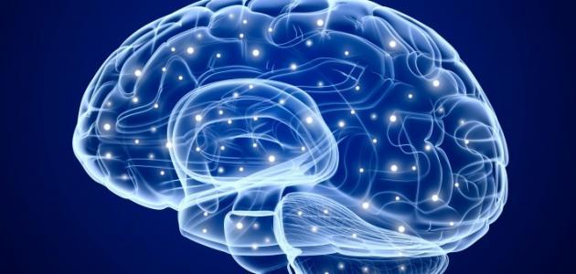 طريقة لتقوية الذاكرة