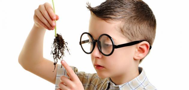 طرق لزيادة ذكاء الطفل
