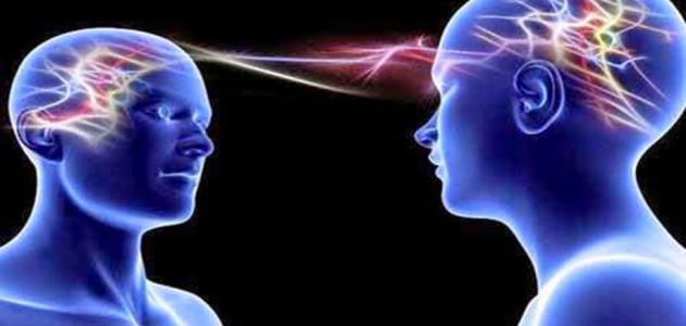 ما الفرق بين المخ والعقل