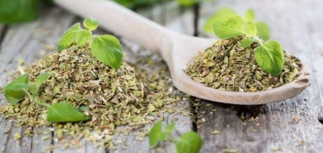 فوائد شاي الزعتر للتنحيف موقع مصادر