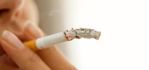 كيفية كتابة خطة بحث عن التدخين موقع مصادر