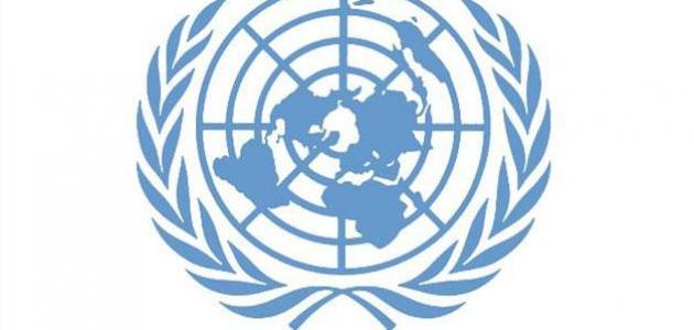 ما هي حقوق الانسان