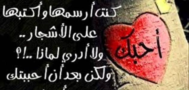 عبارات وحكم عن الحب وأقوي