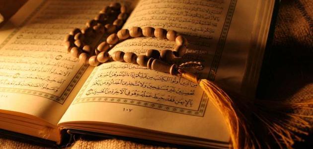 كم عدد الرسل المذكورين في القرآن الكريم