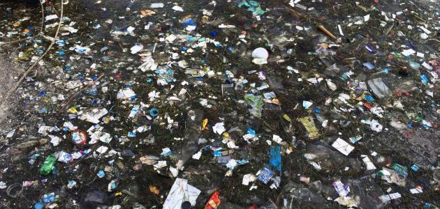 مقال علمي عن التلوث موقع مصادر