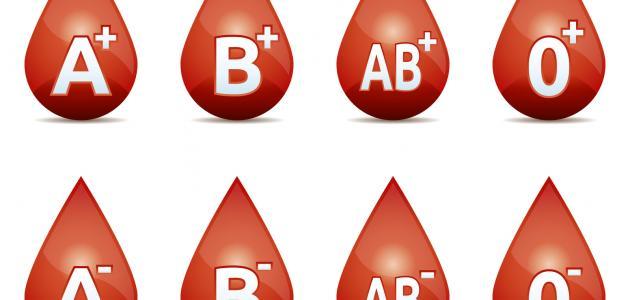 أنواع الدم وفصائله موقع مصادر