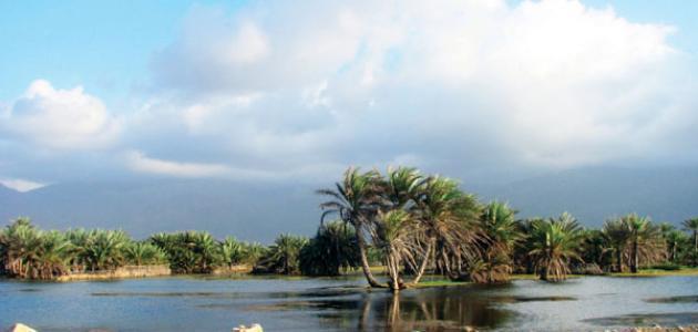 جزيرة سقطرى موقع مصادر