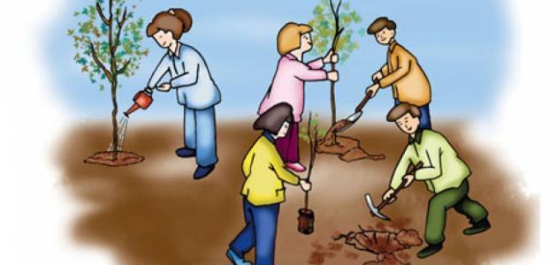تقرير عن حماية البيئة موقع مصادر