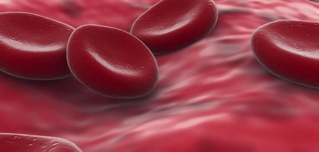 أسباب نقص الصفائح الدموية موقع مصادر