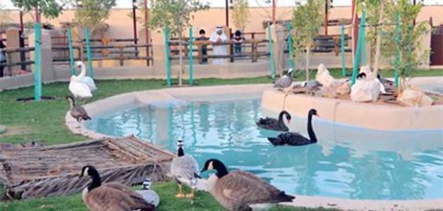 حديقة الحيوان في دبي موقع مصادر