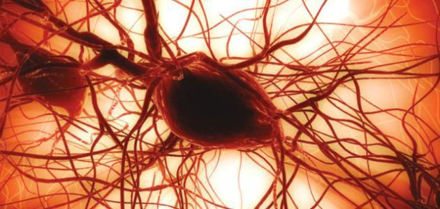 ما سبب نقص الصفائح الدموية في الدم