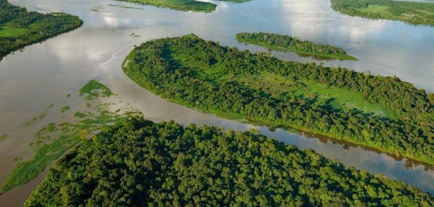 من أين ينبع نهر الأمازون سطور