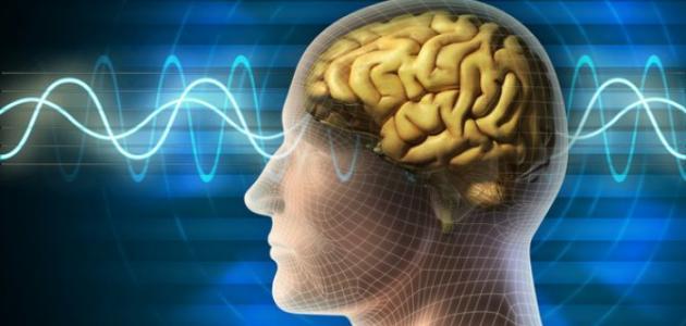 ما أعراض ورم الدماغ موقع مصادر