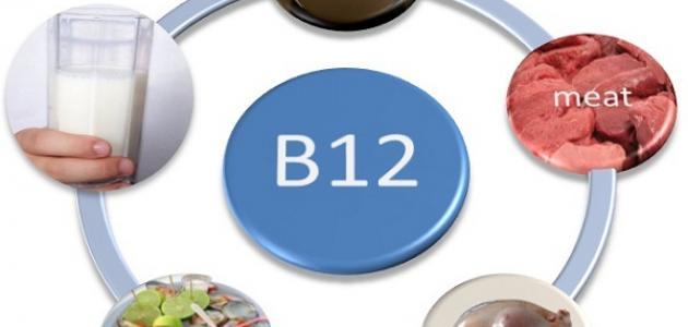 أين يوجد فيتامين ب12 في الطعام موقع مصادر