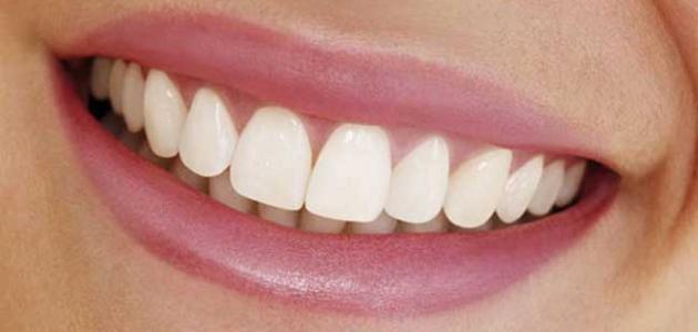 كيف نحافظ على أسناننا